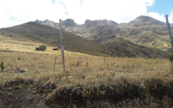 Construcción de Agua para riego de 10,000 m3 en el Ámbito de la Comunidad Campesina de Huaripampa, Distrito de San Marcos, Huari, Ancash