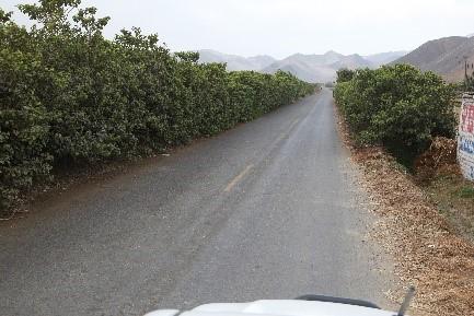 Carretera Vecinal Culebras