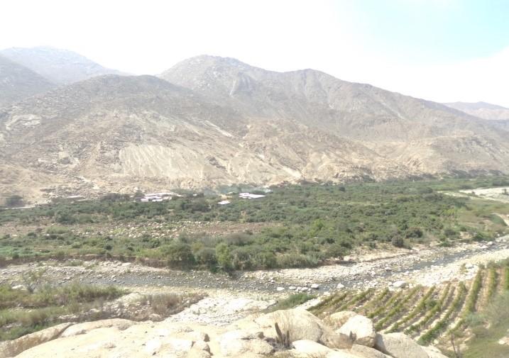 Mejoramiento del Sistema Riego en el Poblado de Chiquiahuanca, Distrito de Paramonga, Barranca, Lima